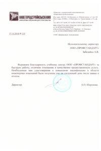 "ООО ""Нижегородстройизыскания"""